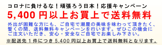 コロナに負けるな!頑張ろう日本!応援キャンペーン 5,400円以上で送料無料